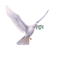 Dove with olive branch as a sign of help